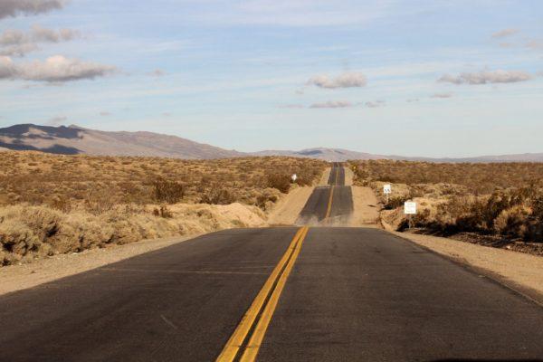 Помощь в получении driver license в США